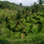 Het zuidelijkste puntje van Bali (Bukit Peninsula)